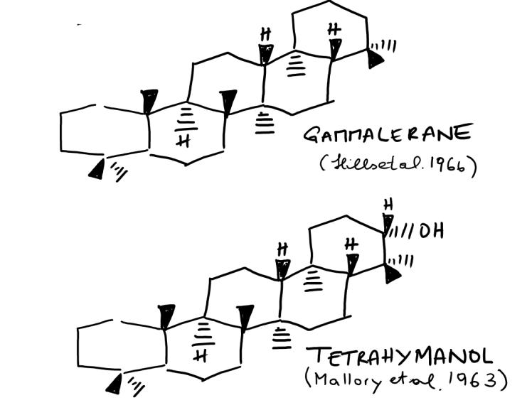 Gammacerane and Tetrahymanol.